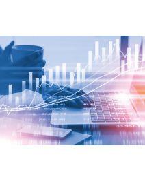 Bilanz und Jahresabschluss